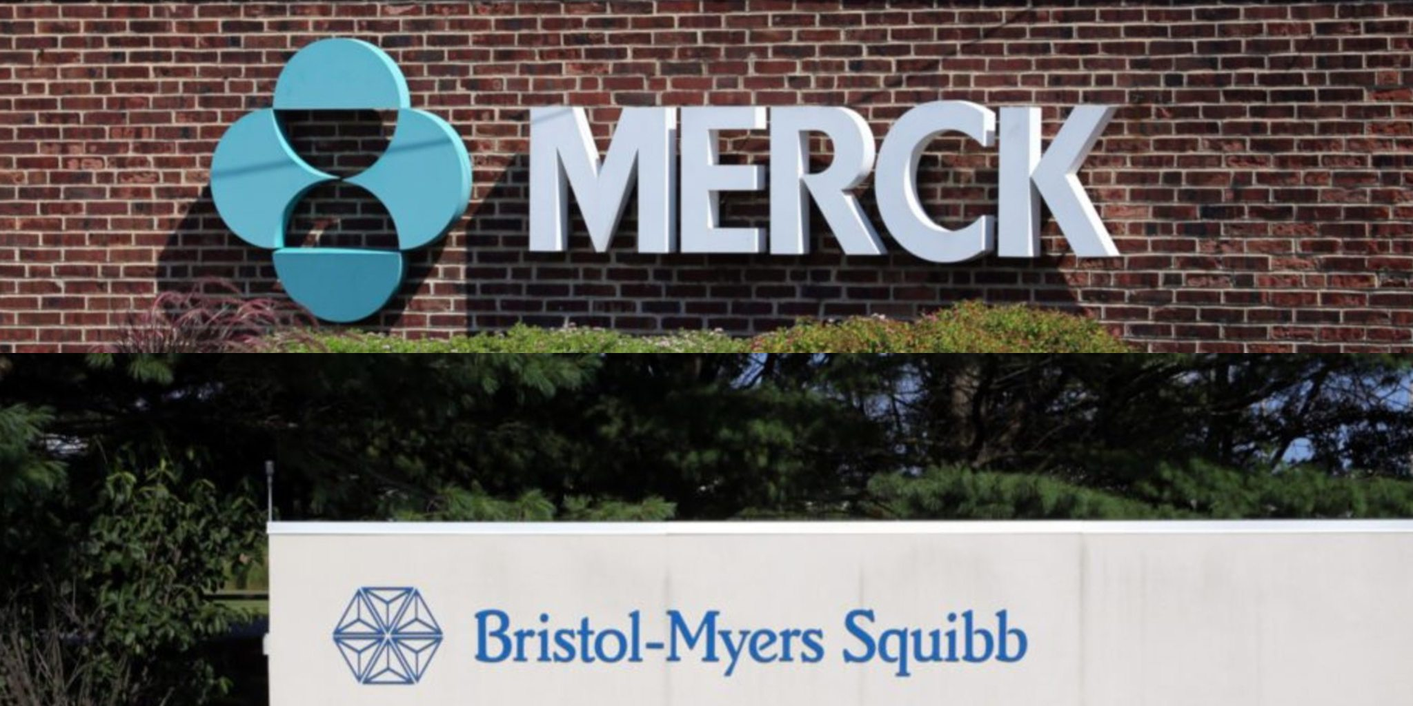 Bristol-Myers says cancer drug combo reduces death risk