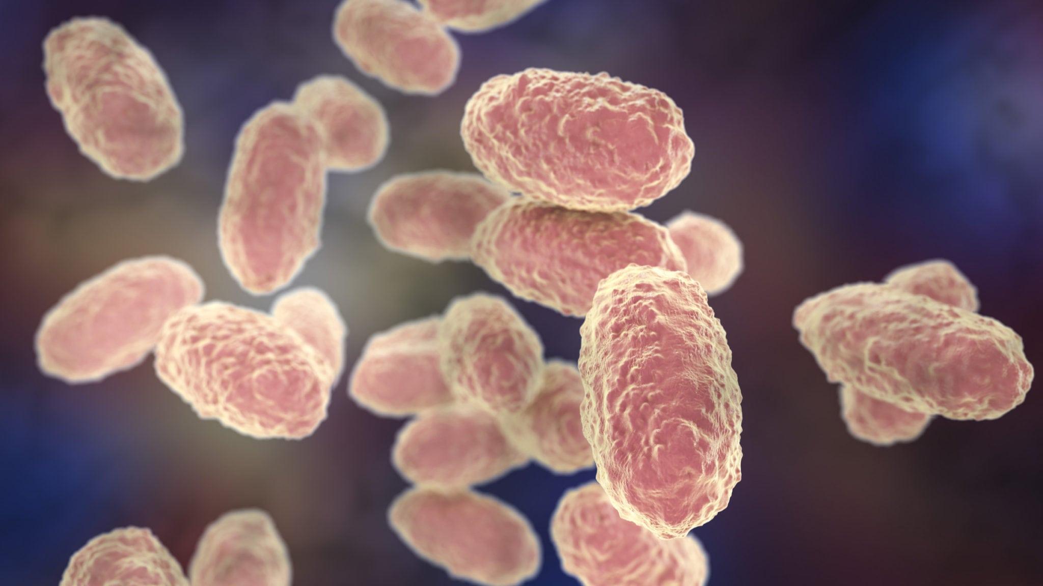 Housing Astrazenecas Old Rd Efforts In Antibiotics Entasis Files