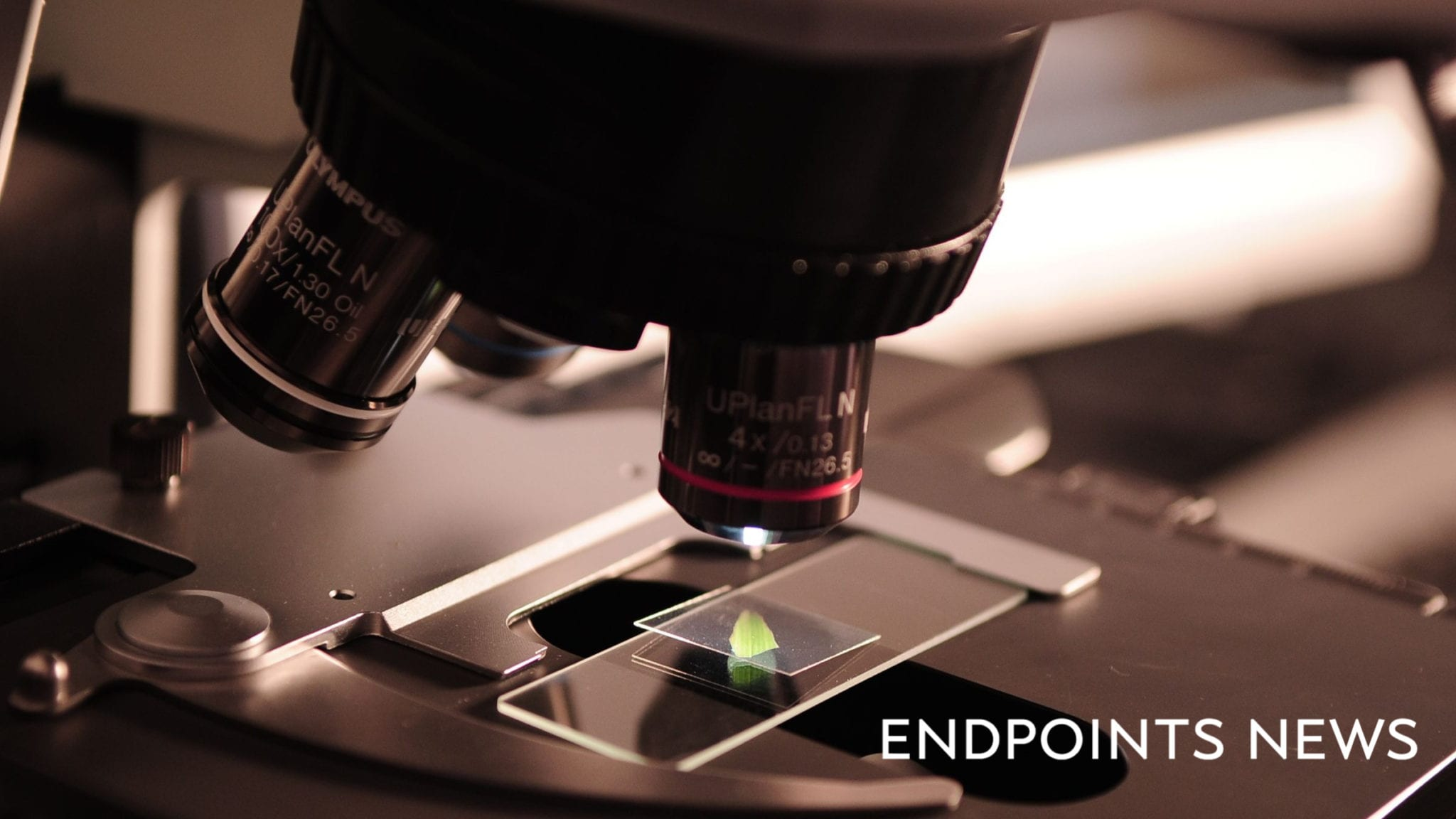 endpts.com - John Carroll - - GSK punts a failed cardio drug to a biotech startup - which has a new development strategy in mind