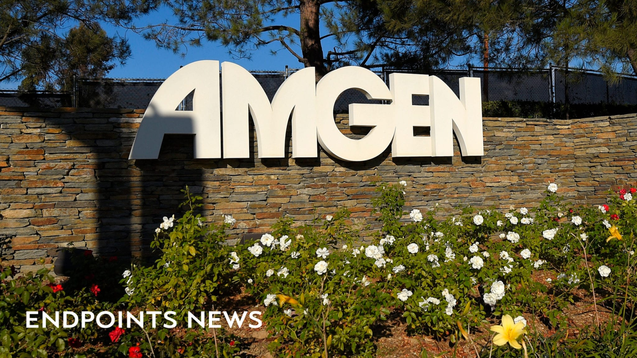 endpts.com - Natalie Grover - - Amgen offers to swallow Denmark-based drug discovery partner in $167M deal